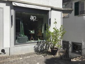 ap store & gallery